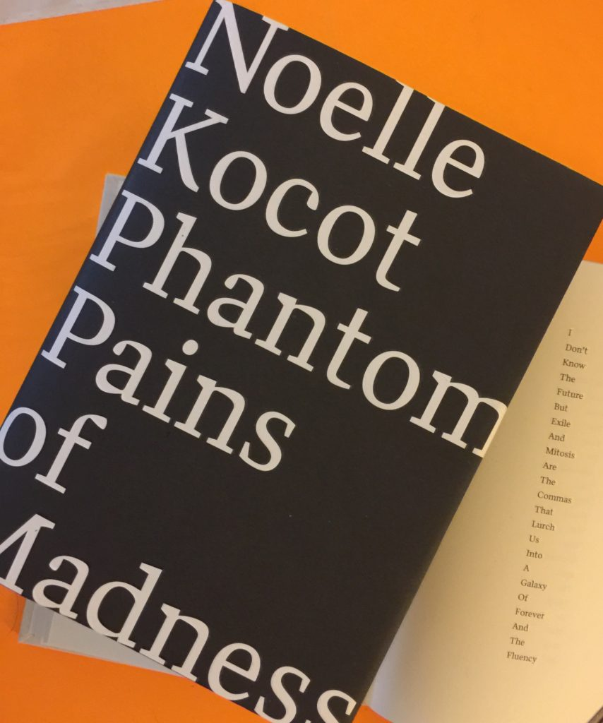 Noelle Kocot, poet, Phantom Pains of Madness